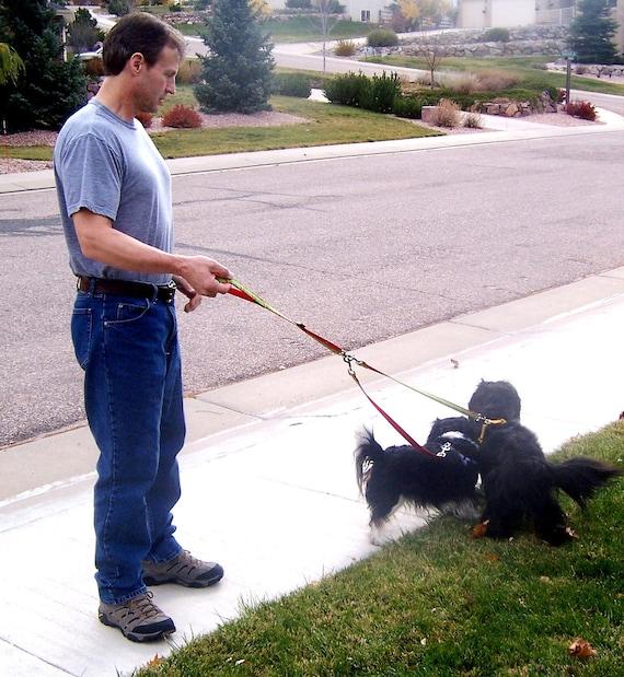 Tangle Free Leash / Two Dog / 5 feet Length x 3/4 inch / Dual Dog Lead