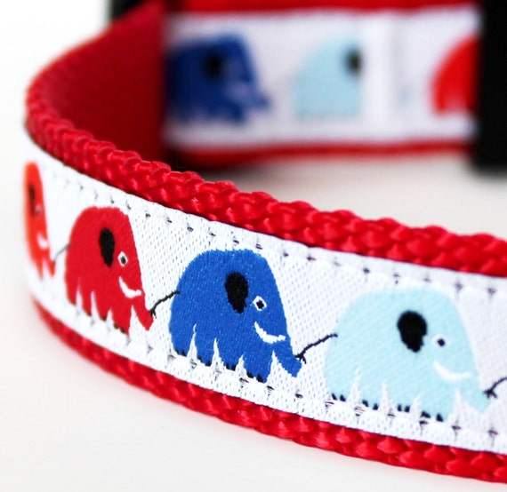 Elephant Train Dog Collar