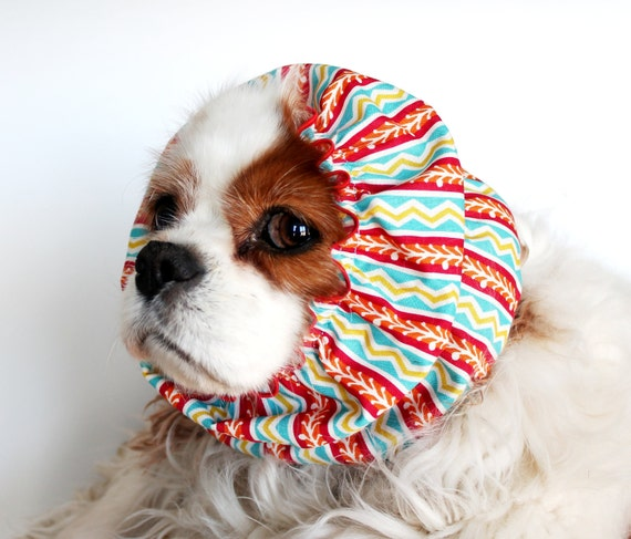 Cavalier Rescue USA Dog Snood / 100% donation to this rescue
