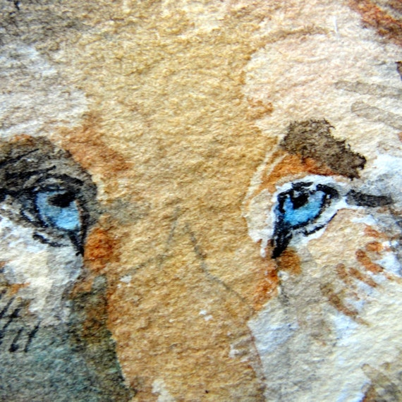 """Indian Wolf Art - """"Wolven One""""  - ACEO Watercolor Painting"""