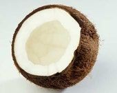 Coconut and Honey Conditioning Hair Milk- 2 oz sample size