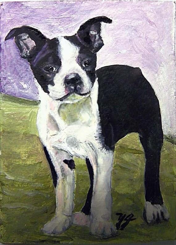 Boston Terrier, Original Aceo