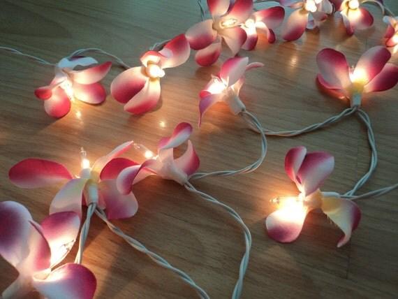 35 Pink & White Flower Frangapani Fairy Lights 3.5 metres