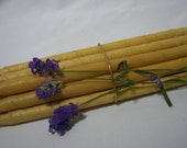 EAR CANDLES NATURAL  Beeswax(Qty. 16) Double Dipped