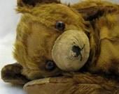 Sad Old Bear