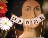 "Wedding Cake Topper ""Mr & Mr"" Cake Bunting - You Choose Colors - Same Sex Marriage"