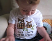 Look Whoo's A Big Brother Owl T Shirt, Ready to Ship, 3T