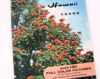 TROPICAL TREES of HAWAII - Vintage Book