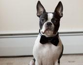 Black Faux Fur Dog Bow Tie