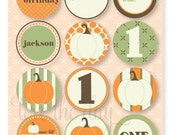 Our Little Pumpkin PRINTABLE CUSTOM Party Circles by Love The Day