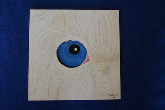 Extreme Close up Old English Sheepdog - Blue Eye