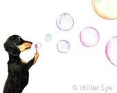 Dachshund Art - Dachshund Blowing Bubbles - Dog Art - 8x10 Print