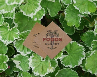 "250 square tags or business cards - 2""x2"" - full color - 20 PT THICK Kraft board/paper - environmentally friendly"