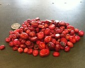 25 Red Coral Beads