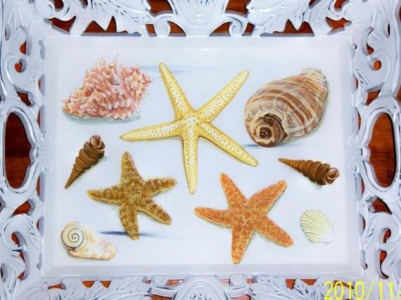 Ornate sea shell wood tray