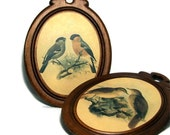 Bird Art Plaques Wall Hangings Rustic  Vintage Woodland Home Decor