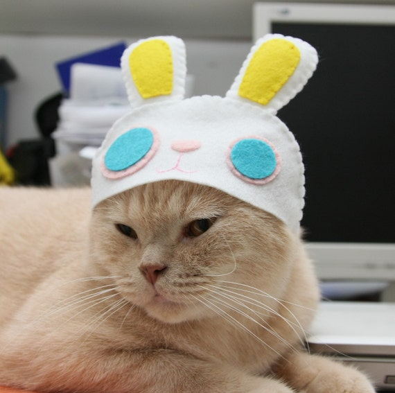 Rabbit Hat for Cat