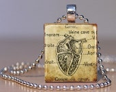 Vintage French Medical Book Heart Anatomy Image made into a Pendant on an Upcycled Scrabble Tile