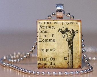 Long Bone Anatomy Illustration from a French Medical Book- Pendant made from an Upcycled Scrabble Tile (04B6)