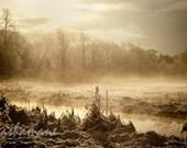 Sun, mist and snow, white winter morning scene 10x15 Fine art photo