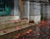 Step by step, rainy Ljubljana in autumn fall, winter 8x12 Photo print, Slovenia, fallen leaves