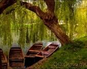 Resting. Cambridge river boat 5x7 art photo print, spring, moored boats, gondolas