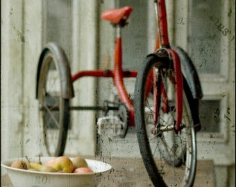 Amelie's tricycle 7x5 art photo print, red trike, bike, bicycle