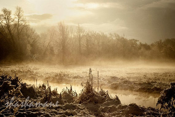 Depths of winter, Sun, mist and snow  8x12 Fine art photography print