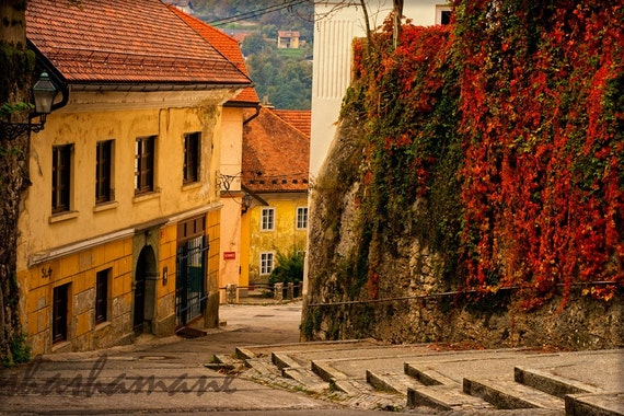 Art photography 5x7 print. Steps in time, Slovenia in autumn fall