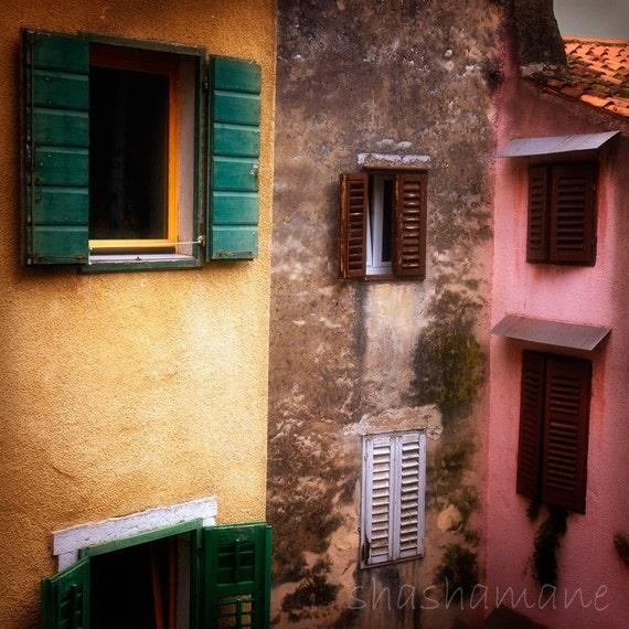 Nests, old italian style windows & shutters, Slovenia 8x8 art photo print
