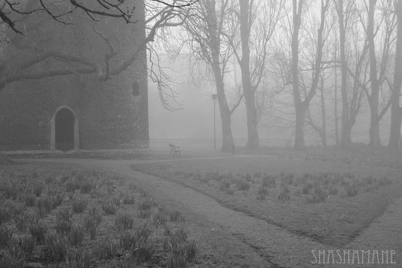 Misty memories 8x12  art photo print, foggy black and white