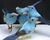 Little blue bird fly high