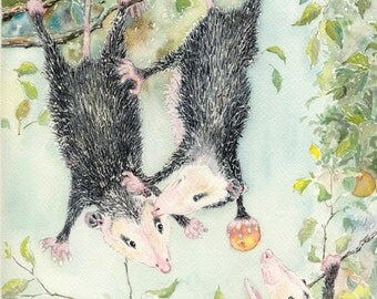 Print open edition 8 by 10 Opossum humor Thief bowman possom wildlife