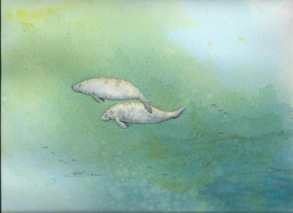 Watercolor original 9 x 12 Florida manatee bowman Traveling Together seacow cruising mph
