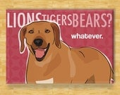 Rhodesian Ridgeback Dog Magnet - Lions Tigers Bears Whatever