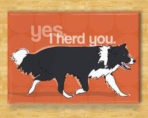 Border Collie Magnet - Yes I Herd You - Border Collie Gift Refrigerator Fridge Dog Magnets