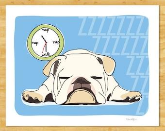 Bulldog Art Print - Napping at Walk Time - White Bulldog Gifts Dog Breed Art
