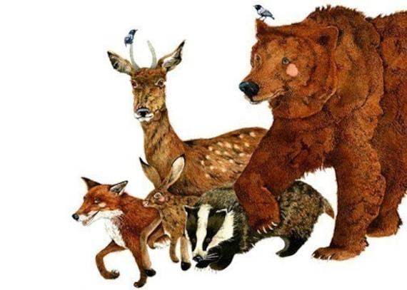 Print Bear and woodland Creatures, Fox, Deer, Hare, Badger art Print 8x11