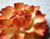 The Peony -  Handmade Paper Flower - Nikki Collection
