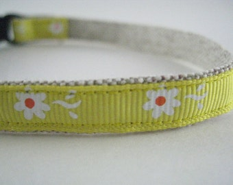 "Yellow Daisy Organic Cotton 1/2"" collar"