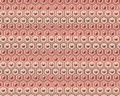 Tula Pink Prince Charming Hex Box Coral Yardage