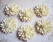 Matte Ivory Cream Resin Water Lily Flower Flat Back - 50mm Large Cabochons - Qty 6