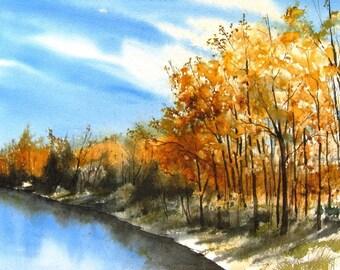 Bosque Del Apache - 8 x 10 Art Print