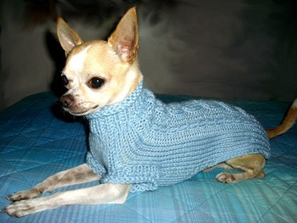 chihuahua fashion knit chihuahua sweater small dog clothes. Black Bedroom Furniture Sets. Home Design Ideas