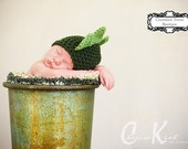 READY to SHIP -- Size 6-12M Only -- Jolly Green Dino Crocheted Hat -- Also available in Baby to Adult Sizes