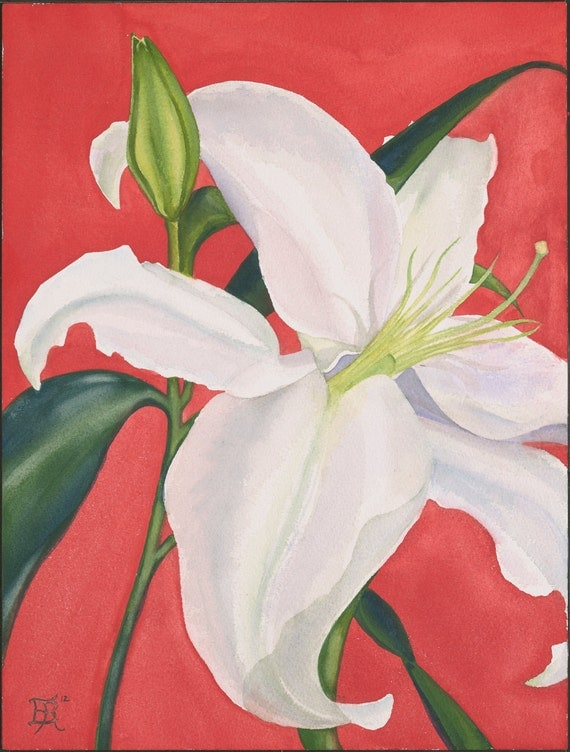 White Lilly with Red PRINT