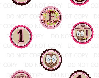 Printable DIY Owl First Birthday Theme Cupcake Toppers - Pink