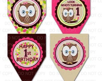 Printable DIY Owl First Birthday Theme Decorative Pennants or Banner
