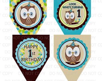 Printable DIY Owl First Birthday Theme Decorative Pennants or Banner - Blue for BOY
