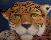 The Original Cougar